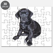 Mastiff Puppy Puzzle
