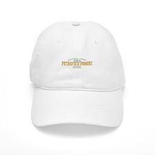 Petrified Forest Arizona Baseball Cap