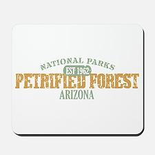 Petrified Forest Arizona Mousepad