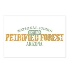 Petrified Forest Arizona Postcards (Package of 8)