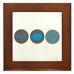 2012 Development & Gene Expre Framed Tile