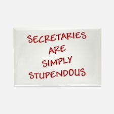 Secretaries are Stupendous (r Rectangle Magnet