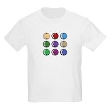 2009 International Meeting T-Shirt