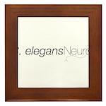 2008 C. elegans Neuro Mtg Framed Tile
