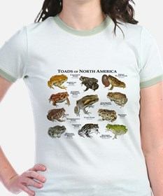 Toads of North America T