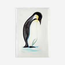 Emperor Penguin Rectangle Magnet