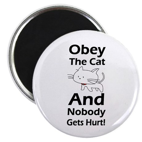 """Obey the cat no one gets hurt 2.25"""" Magnet (10 pac"""
