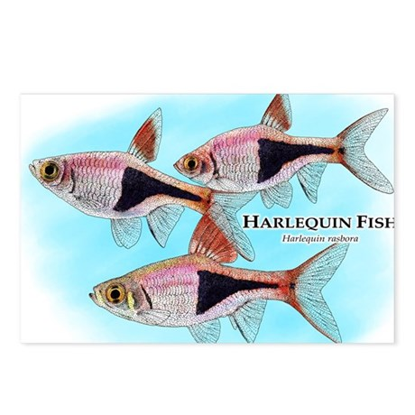 Harlequin Fish Postcards (Package of 8)