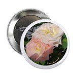 Mama's Two Beautiful Roses Button