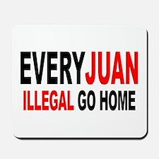 Anti-Illegal Immigration MX2  Mousepad