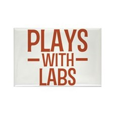 PLAYS Labs Rectangle Magnet