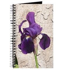 Bearded Iris Journal
