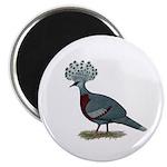 Victoria Crowned Pigeon Magnet