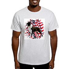 Boston 4 Ash Grey T-Shirt