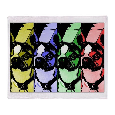 Boston Graphic Colorbar Throw Blanket
