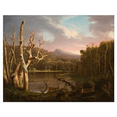 Lake with Dead Trees (Catskill) Poster
