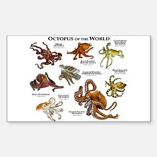 Octopus of the World Sticker (Rectangle)