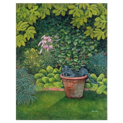 The Flower-Pot Cat Poster