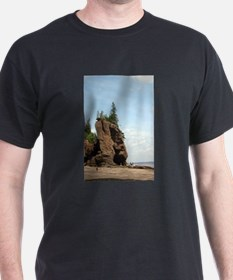 Hopewell Rocks, NS T-Shirt