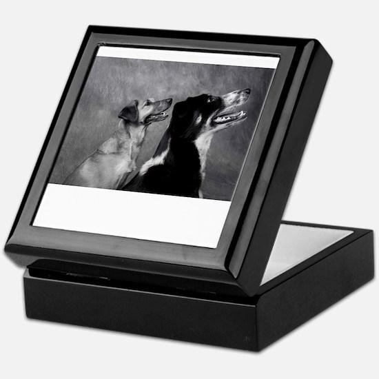 Dog Smiles - Smiling Dogs Keepsake Box