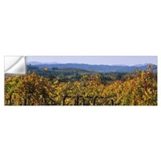 High angle view of a field, Alexander Valley, Napa Wall Decal