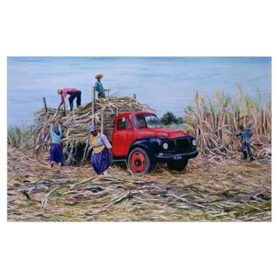 Loading Canes (oil on canvas) Framed Print