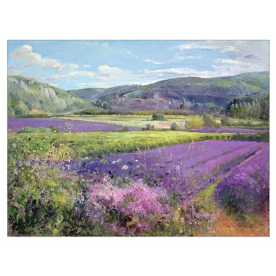 Lavender Fields in Old Provence (oil on canvas) Canvas Art