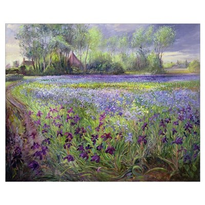 Trackway past the Iris Field, 1991 Framed Print