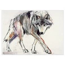 Wolf (mixed media on paper) Poster