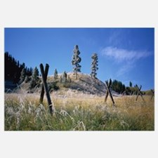 Fence in a field, Lewis and Clark County, Montana