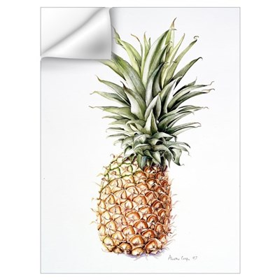 Pineapple, 1997 (w/c on paper) Wall Decal