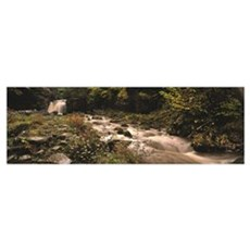 Stream flowing through a landscape, Thomason Foss, Poster
