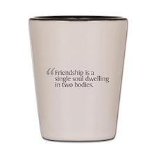 Aristotle Friendship is a sin Shot Glass