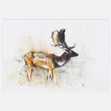 Magnificent Fallow Buck, 2006 (charcoal