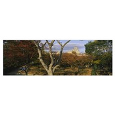 Trees in front of a castle, Himeji Castle, Himeji, Poster