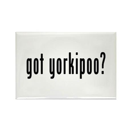 GOT YORKIPOO Rectangle Magnet (10 pack)