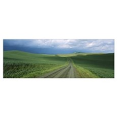 Dirt road passing through a farmland, Palouse Regi Poster