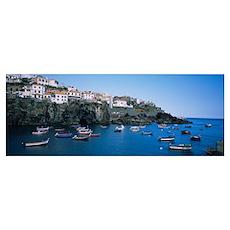 Boats in the sea, Camara De Lobos, Madeira, Portug Poster
