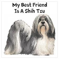 My Best Friend Is A Shih Tzu Wall Art Poster