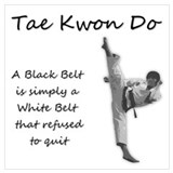 Tae kwon do Wrapped Canvas Art