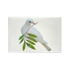 Dove Olive Branch Rectangle Magnet