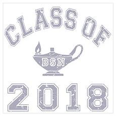 Class Of 2018 BSN Wall Art Poster
