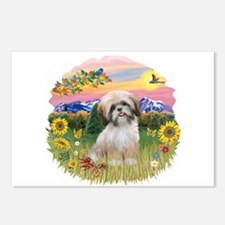 MtCountry-ShihTzu#13 Postcards (Package of 8)