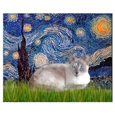 Starry / Lilac Pt. Siamese Wall Art Poster
