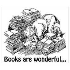 Books Are Wonderful Wall Art Poster