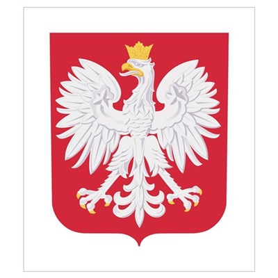 Polish Eagle Crest Wall Art Poster
