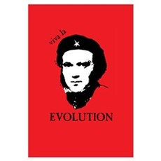 Red Darwin. Viva! Wall Art Canvas Art