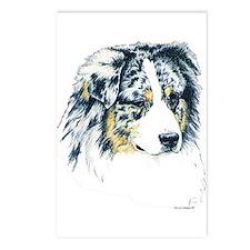 Australian Shepherd Head Postcards(8)