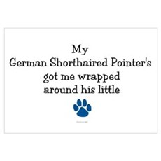Wrapped Around His Paw (German SH Pointer) Mini Po Framed Print