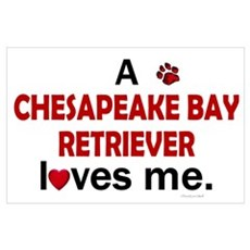 A Chesapeake Loves Me Wall Art Poster